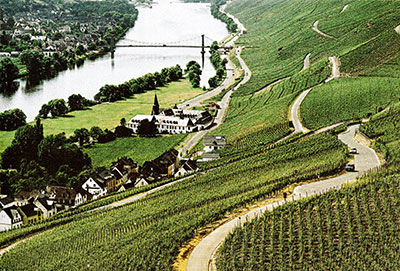 Mosel Valley where most German riesling is produced.
