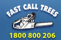 Tree Loppers, Stump Grinders, Tree Removals